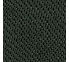 DARK GREEN SCALES Photographic Print