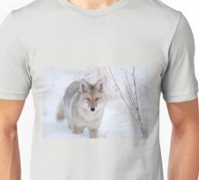 Coyote in Snow at Yellowstone NP Unisex T-Shirt