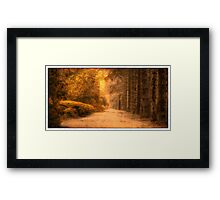 Breenhold Gardens - Mount Wilson NSW Australia - The HDR Experience Framed Print