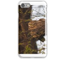 Cute Owls sleeping Tight iPhone Case/Skin