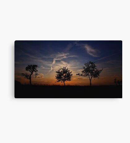 Sunset Review Canvas Print