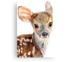 Cute Baby Deer/ Fawn Canvas Print