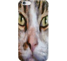 Long Haired Tabby Cat Close Up Portrait iPhone Case/Skin