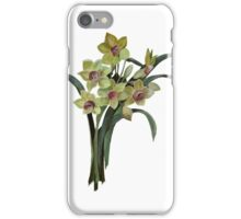 Lent Lily Isolated iPhone Case/Skin
