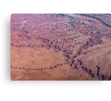 Red Earth - Flying Over Meandering Canyons, Riverbeds and Mesas Canvas Print