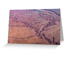 Red Earth - Flying Over Meandering Canyons, Riverbeds and Mesas Greeting Card