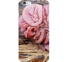 pink gummy iPhone Case/Skin