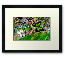 The Fantasy Garden Framed Print