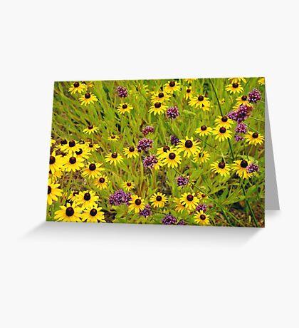 Yellow echinacea flowers Greeting Card