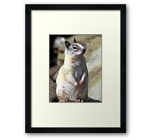 Mama Mia! That's Me! Framed Print