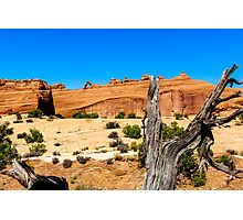 Delicate Arch at Arches National Park Photographic Print