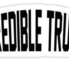 The Incredible True Story Sticker