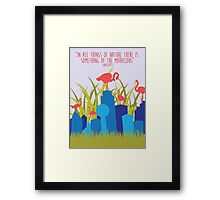 Dallas Animals- Flamingos Framed Print