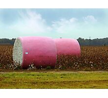 The Breast Cancer Awareness Pink Cotton Bales Photographic Print