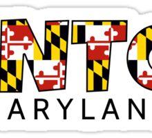 Denton Maryland flag word art Sticker