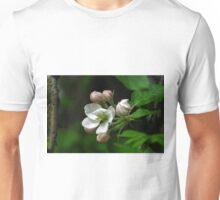 apple tree bloosoms Unisex T-Shirt