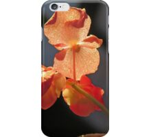 Waiting for Sugared Spring iPhone Case/Skin