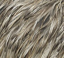 Brown feathers by welovevintage