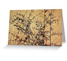 Weed Shadows Greeting Card