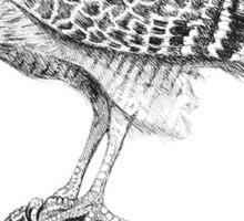 The Hawk Sticker
