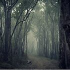 A Road Less Traveled by Ben Loveday