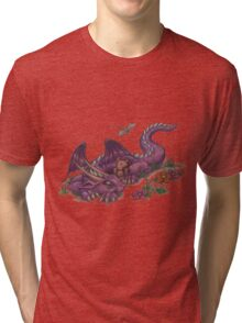 Napping Dragon (with teddy bear) Tri-blend T-Shirt