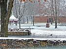 Duck Pond in the Snow by FrankieCat