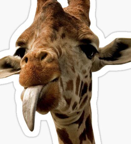 Giraffe with Cute Tongue! Sticker