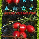 Christmas and New Year Card for RedBubble by Kathryn Jones