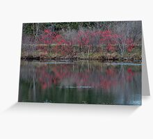 Red berry reflections Greeting Card
