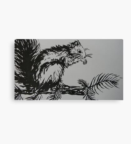 Squirrel bout to groom Canvas Print