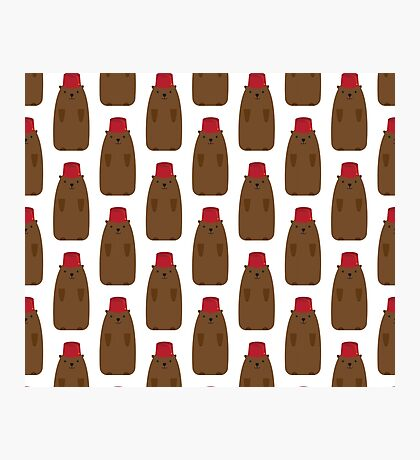 Groundhog in a Fez pattern Photographic Print