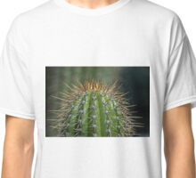 Echinopsis Spachiana Torch Cactus Guilfoyle's Volcano Melbourne Botanic Gardens Victoria 20151108 0611   Classic T-Shirt