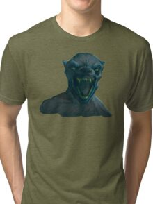 Professor Lupin- Harry Potter Tri-blend T-Shirt