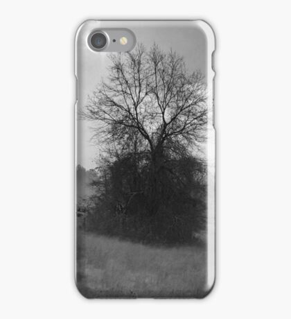 Following the Fog iPhone Case/Skin
