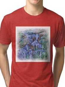 The Atlas Of Dreams - Color Plate 28 Tri-blend T-Shirt