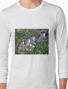 4 Australian wild kookaburra's  Long Sleeve T-Shirt