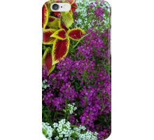 Clamatis and Sweet Williams iPhone Case/Skin