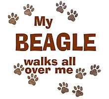 My Beagle Walks All Over Me Photographic Print