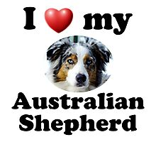 I Love My Australian Shepherd Photographic Print