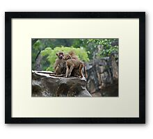 Kisses Are Really Not Necessary! Framed Print
