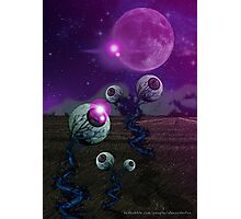 Pineal Fields: Farming the Third Eye Photographic Print