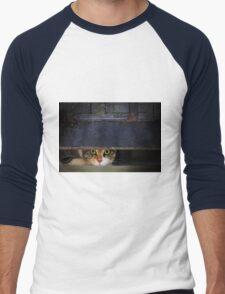 Curious Looks of Calico Cat Men's Baseball ¾ T-Shirt