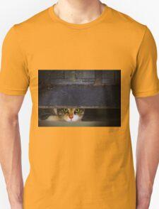Curious Looks of Calico Cat Unisex T-Shirt