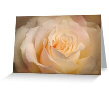 Softly Blushing Greeting Card