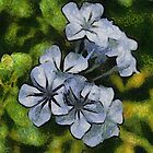 Delicate Plumbago Painted In Van Goch Style by taiche