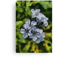 Delicate Plumbago Painted In Van Goch Style Canvas Print
