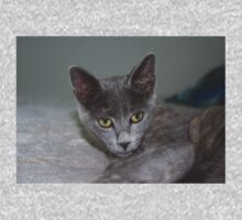 Beautiful Portrait of A Grey Russian Cross Tabby Cat Kids Tee