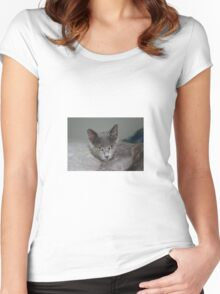 Beautiful Portrait of A Grey Russian Cross Tabby Cat Women's Fitted Scoop T-Shirt