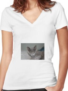 Beautiful Portrait of A Grey Russian Cross Tabby Cat Women's Fitted V-Neck T-Shirt